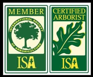 isa_logo (1)