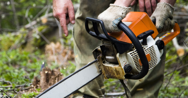 How The Chainsaw Became An Eco-friendly Tool